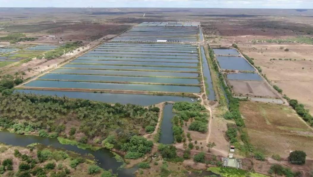 Acompanhamento da operação dos Vales do Jaguaribe e Banabuiú é divulgado pela Cogerh